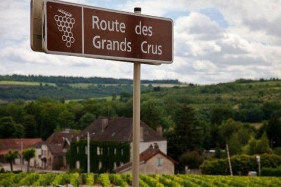 Route de Grands Crus