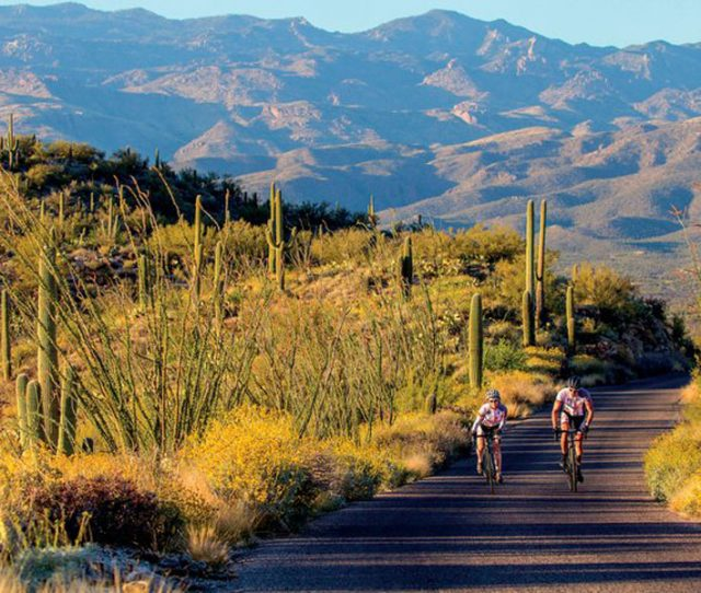 Arizona biking and skyline