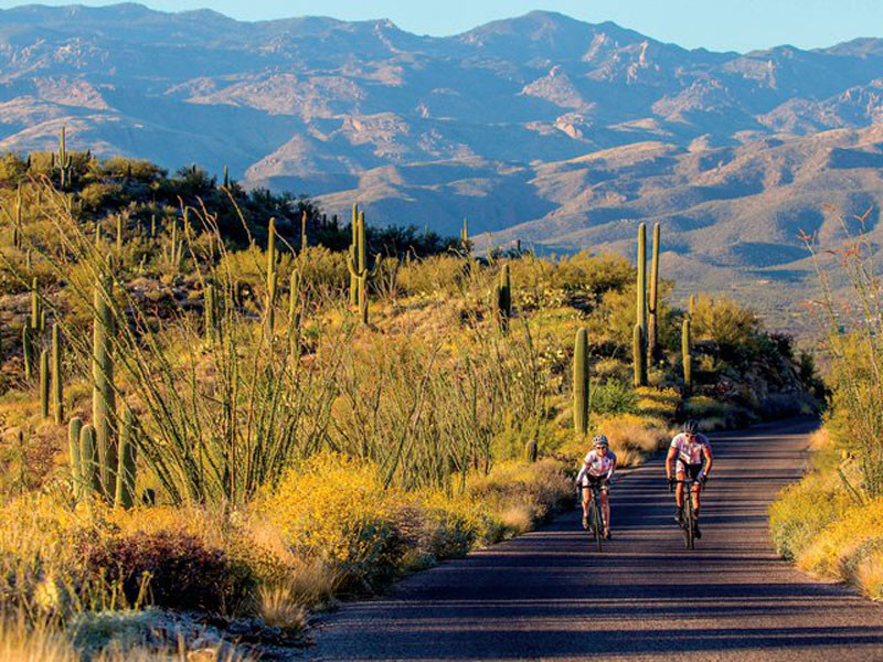 Arizona Saguaro National Park Amp The Sonoran Desert Bike