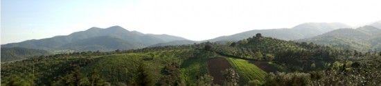 Agriturismo Montebelli--View