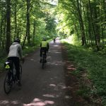 Alsace and the Black Forest: La Route des Vins - Biking route