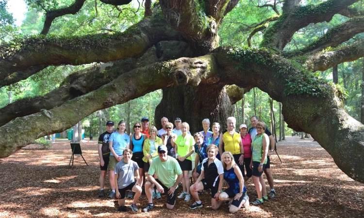 Angel Oak, South Carolina