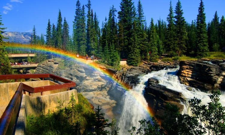 Athabasca Falls, Canadian Rockies Bike Tour, VBT