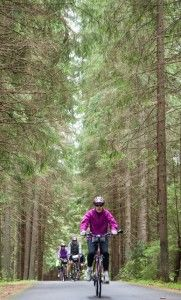 Biking in Sumava