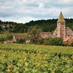 Burgundy-2015---Lead