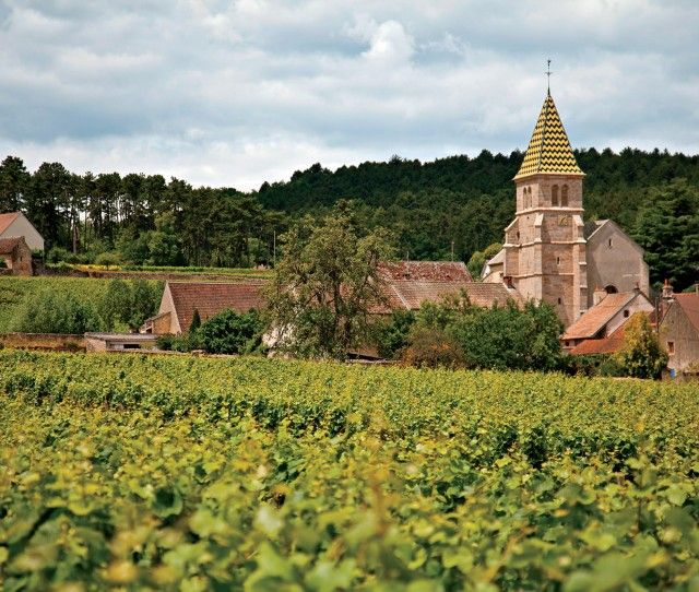 Wine from Burgundy France