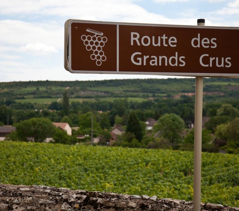 Burgundy wine route des grands crus