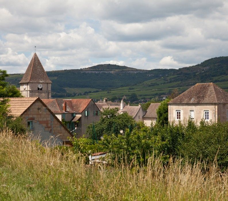 Burgundy countryside; VBT