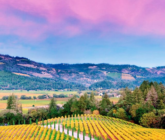California Wine Country & the Pacific Coast