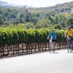 California wine and bike tours