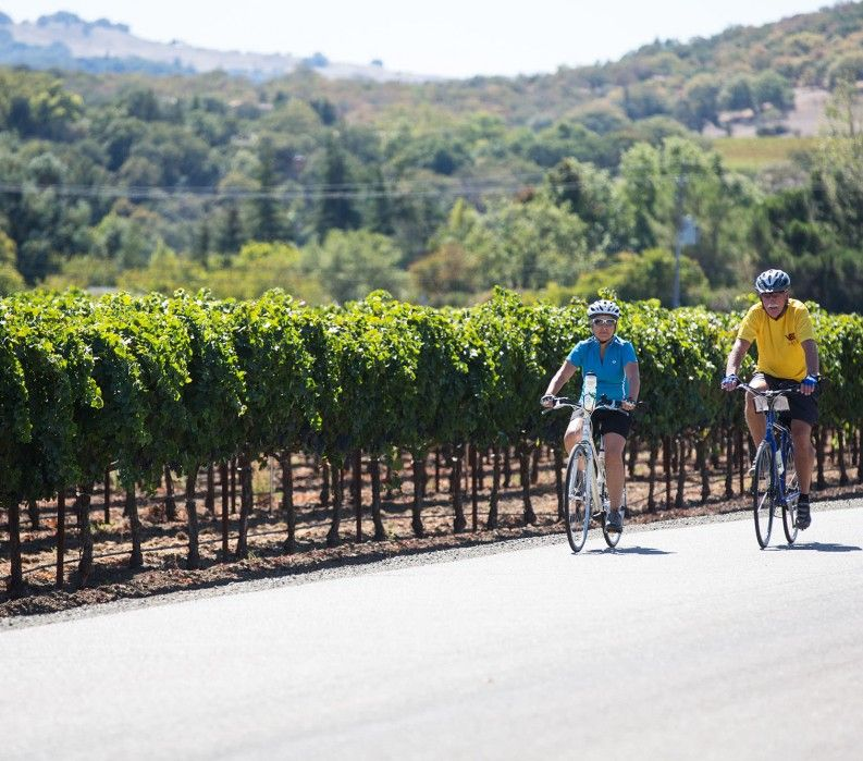 California wine and bike tours