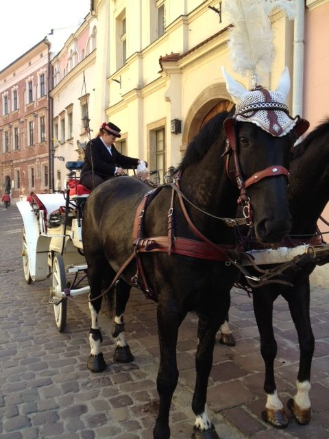 Carriage Ride in Krakow