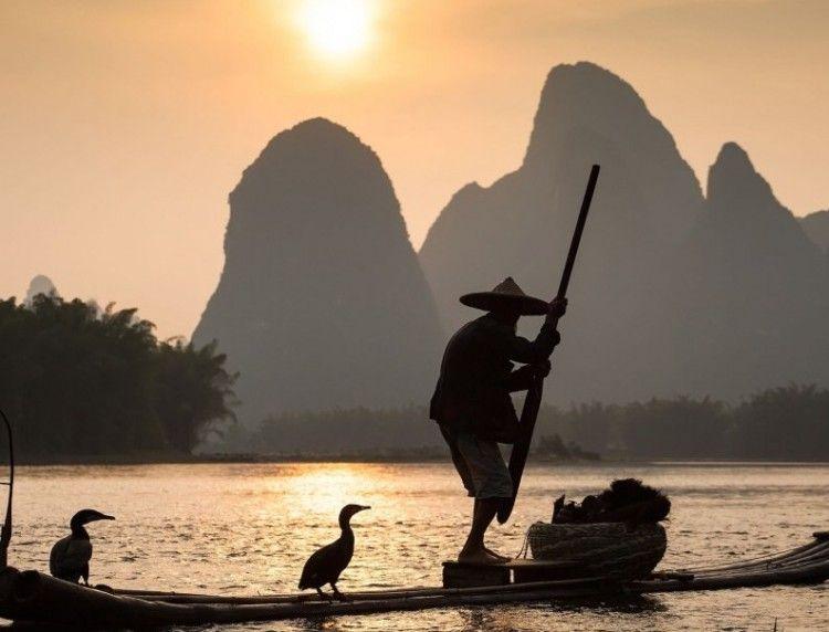 China Cormerant Fisherman