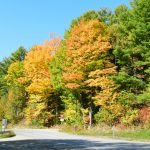 Classic Vermont Biking Tour, Country Road