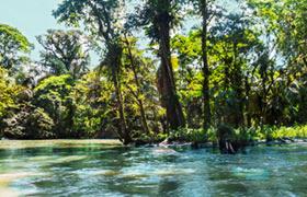 Costa Rica Pre Trip in Tortuguero
