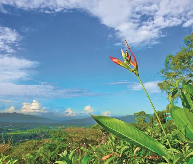 Costa Rica_lead