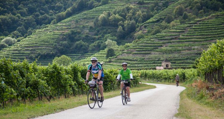 Czech Biking Tour