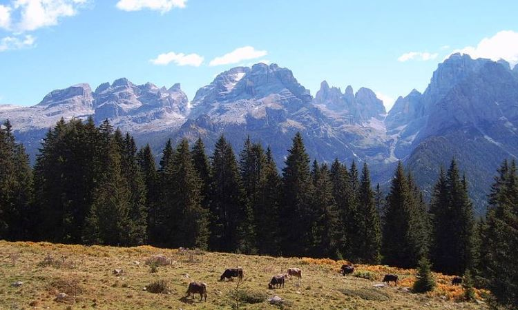 Brenta Dolomites, blog
