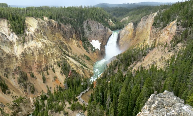 Grand Canyon of the Yellowstone, VBT Walking Tour