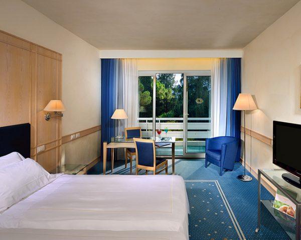 Hotel du Lac du Parc Guest Room