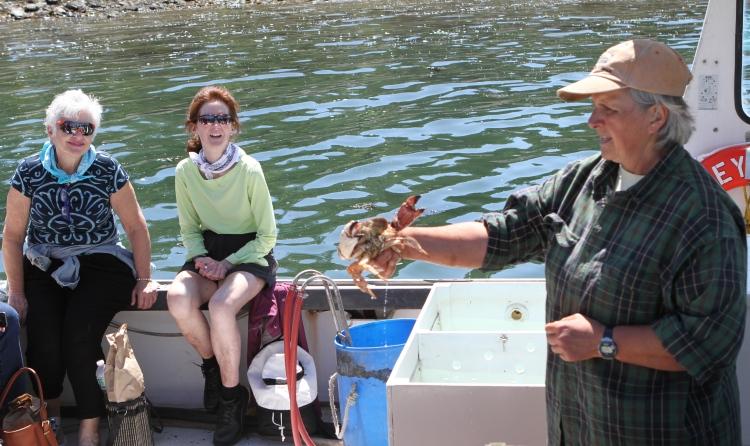 Maine Lobsterwoman