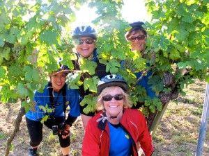 jane grape vine