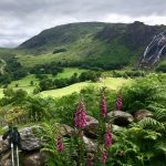 Ireland: Walking the West Country