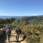 Walking The Italian Lakes Tour - Hikers