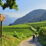 Italy Trentino Alto Adige, Bolzanodistrict