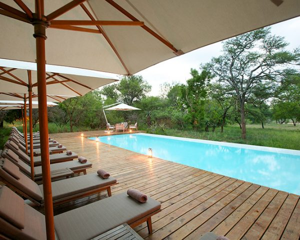 Kapama South Camp Pool