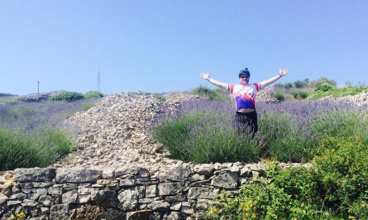 Croatia Lavender field VBT biking tour