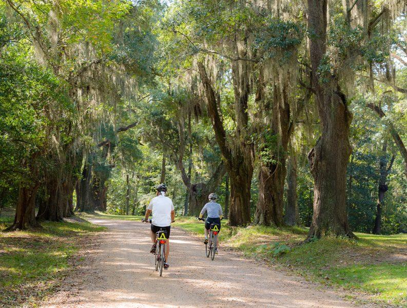 Longwood driveway biking