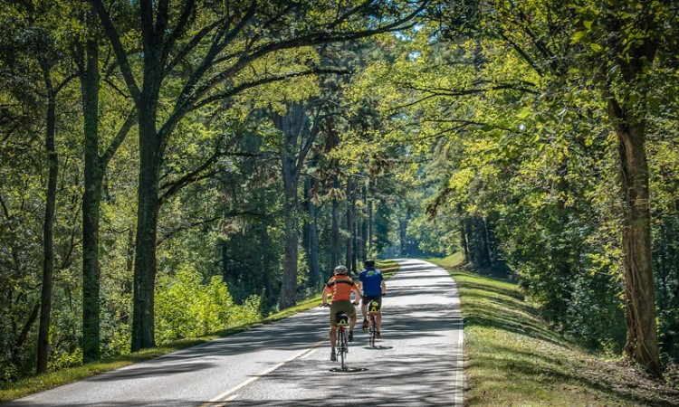Natchez Trace; Mississippi, Top North America Vistas, VBT