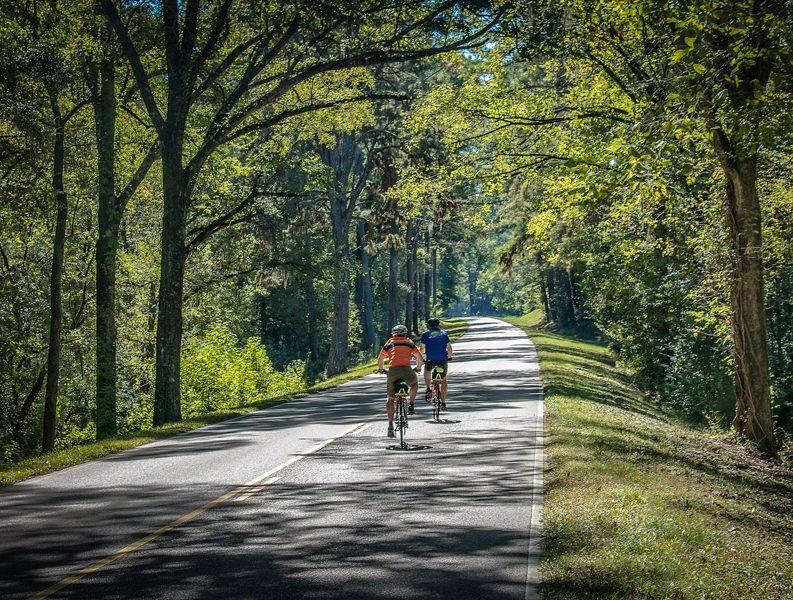Natchez Trace Parkway bikers
