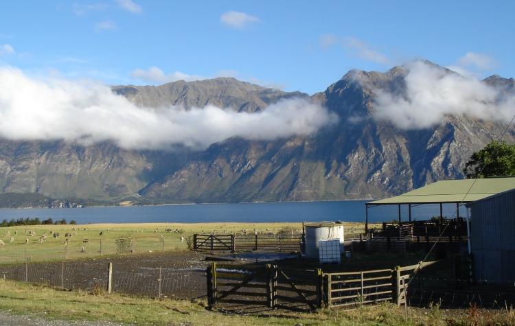 New Zealand sheep station homestay, VBT