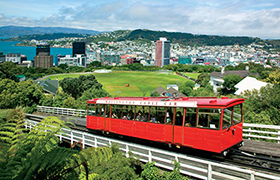 New Zealand Pre Trip Extension in Wellington