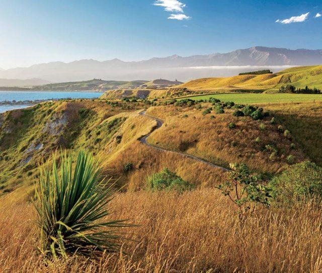 Walking Trails along New Zealands Coast
