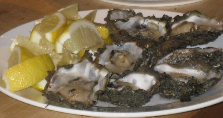 terschelling oysters, blog