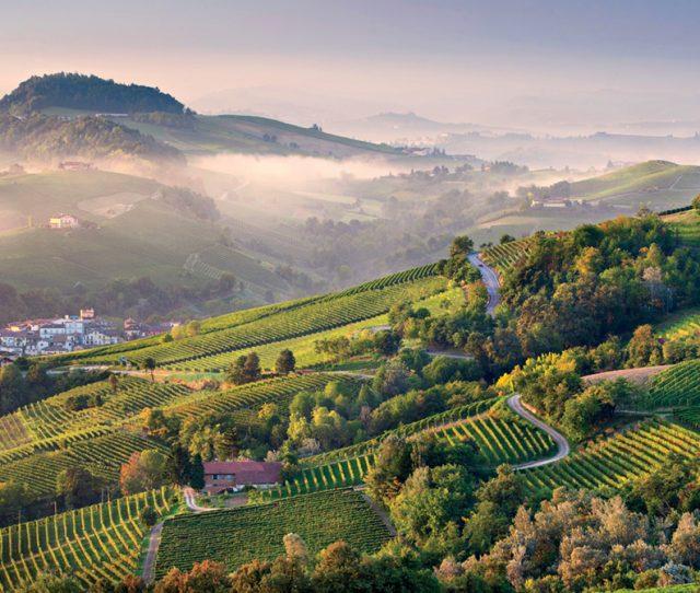 Barolo farmland, Piedmont biking tour