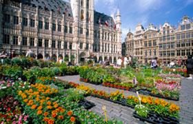 Pre Trip Extension in Brussels