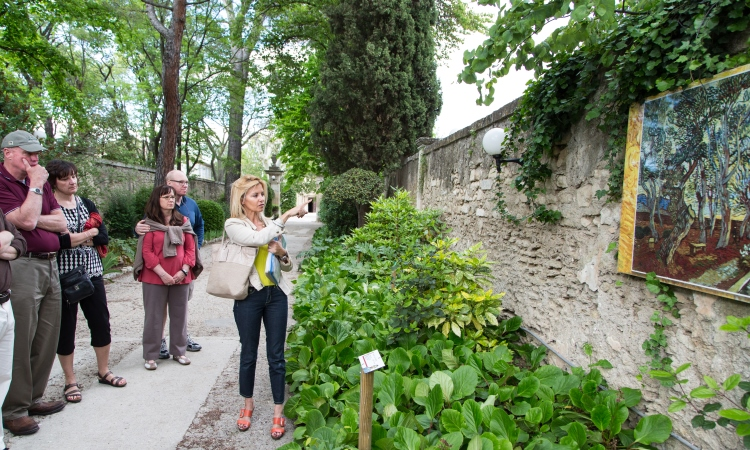 van Gogh walking tour, Saint remy Provence, VBT