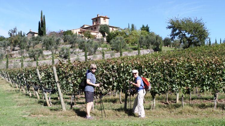 San Felice Wine Walk