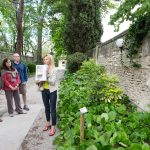 St Remy Van Gogh Art Walk - VBT Bicycling tour Provence