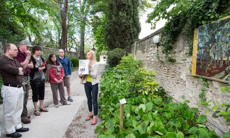 St Remy Van Gogh Art Walk - VBT Bicycling tour Provence