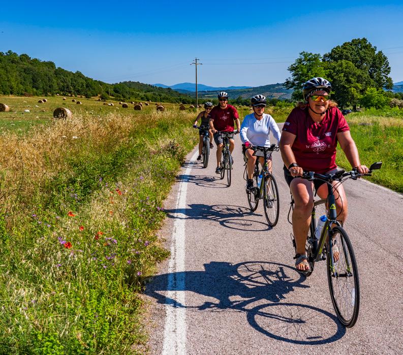 The Tuscan Coast, Italy. Group biking along field.