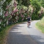 Tuscan bike tour