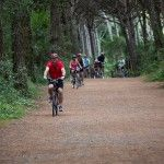 Bike tours in Italy