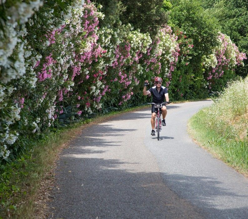 Bicycling in Tuscany