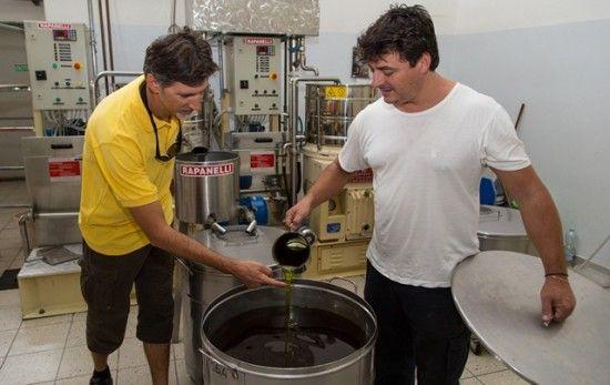 Tuscany Olive Oil tasting