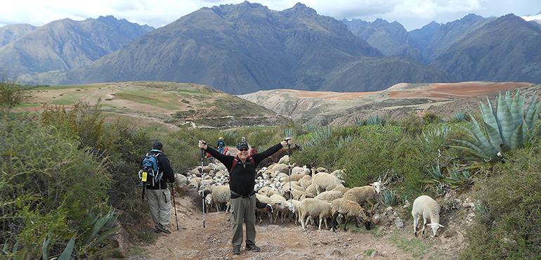VBT Walking Tour of Peru